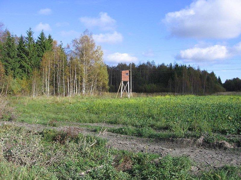 suche jagd auf elch in lettland