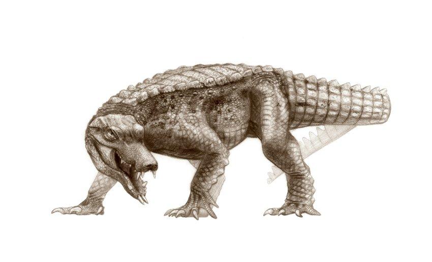 herr h dinosaurier